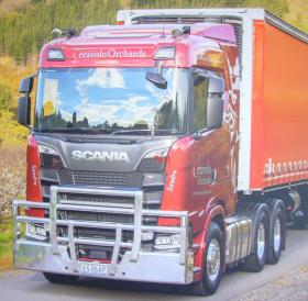 Scania R650 new generation FUPS Polished Hi-tensile custom Bullbar         #3